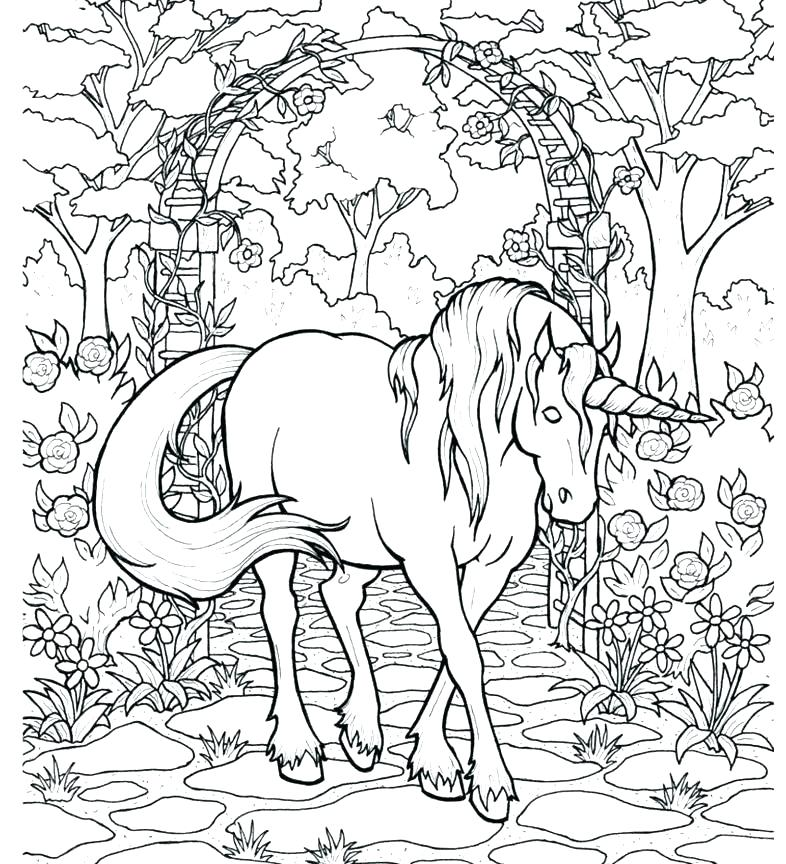 Unicorns - Free printable Coloring pages for kids | 864x786